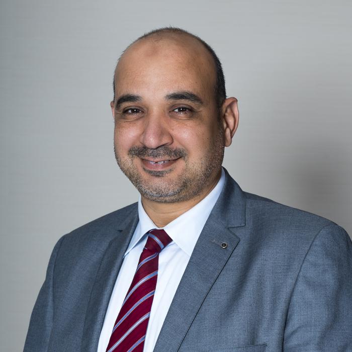 Hany Atef El Ashhat